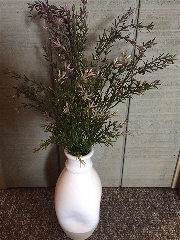 Lavender Bush-Lavender, Bush, Pick, Stem